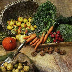 Agricultura-EcoAldeia